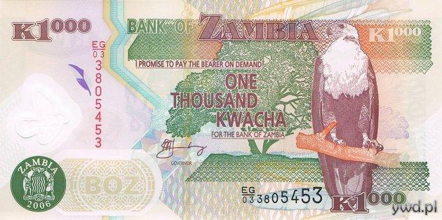 zambia_1000_kwacha_awers